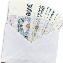 Cestovní náhrady nejsou příjmem v pravém slova smyslu. Exekuční srážky tak mohou být prováděny jen z platu nebo ze mzdy.